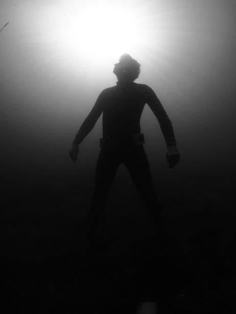 Theme freediver